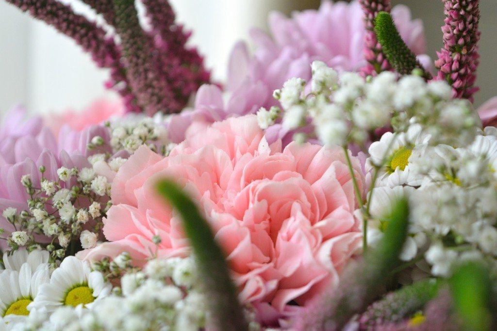 floraria-floria