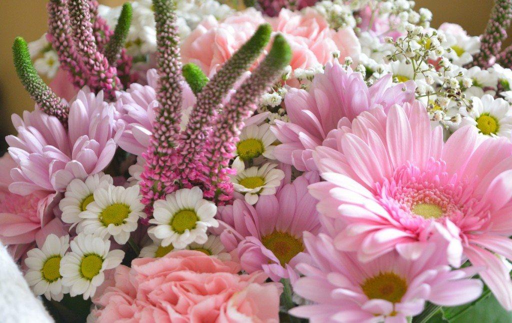 floria-florarie-buchetflori-beautybarometer