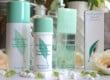 Elizabeth Arden Green Tea, parfumul obsesiv
